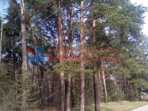 kottedzh-k-p-zelenyy-gorod фото
