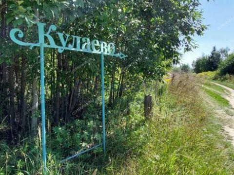 derevnya-kulaevo-gorodskoy-okrug-chkalovsk фото