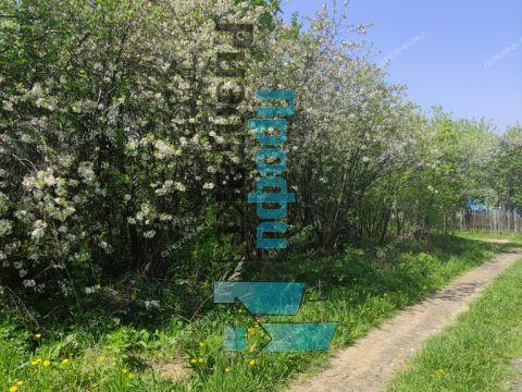 derevnya-olenino-bogorodskiy-municipalnyy-okrug фото